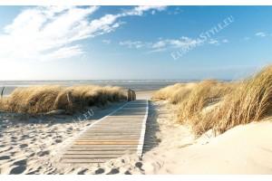 Фототапет морска пътека сред дюни