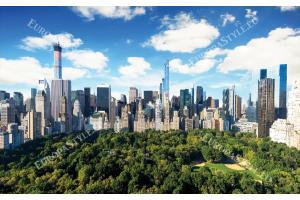Фототапети изглед на Ню Йорк Сентрал парк