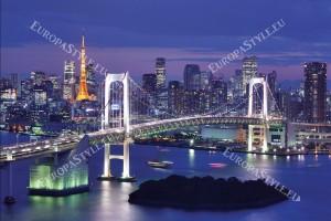 Фототапети красив нощен изглед Токио