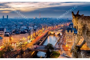 уникална гледка поглед върху Париж