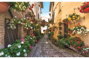 Фототапети ретро улица с  цветя 2