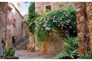 Фототапети старинна къща с цветя