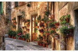красива ретро улица с фасада врати