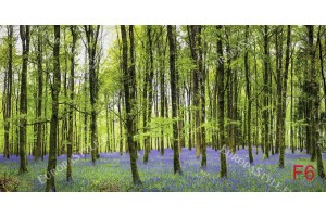 Фототапети красива зелена гора с лилави цветя