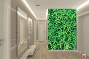 Фототапети стена от зелени листа