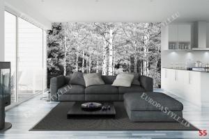Фототапет брезова гора в черно-бяла гама
