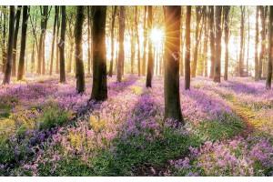 красива естествена гора с рисувани цветя