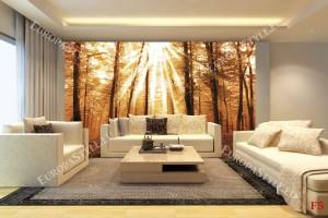 Фототапет красива слънчева гора