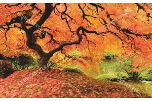 Фототапет красиво дърво в оранжево край езеро