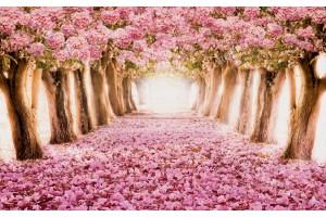 Фототапет горска пътека от розови дървета