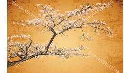 Фототапет японски цвят дърво в оранжева гама