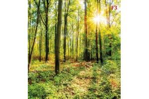 Фототапет зелена гора модел 5
