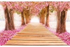 Фототапет алея с розови дървета дървена пътека