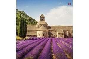 Фототапети Франция имение с лавандула поле