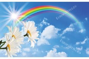 Фототапет синьо небе с дъга и цветя