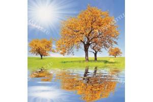 Фототапет огледален изглед красиво дърво