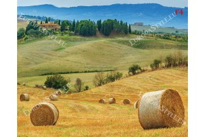 Фототапет красив Tоскански пейзаж с полски бали