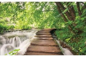 Фототапети горска пътека край река