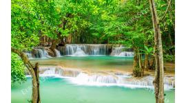 Фототапети екзотичен водопад с дървета на преден план