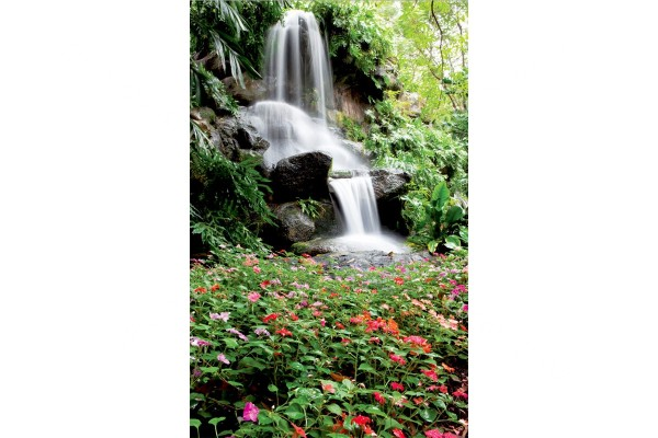 Фототапети градински водопад с красиви цветя 2