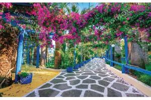 Фототапет цветна гръцка градина с бугенвилия