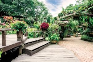 Фототапети изглед красива цветна градина