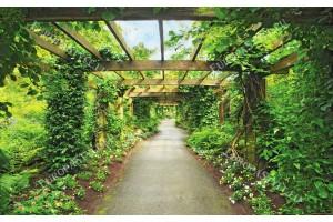 Фототапет дървена градинска арка
