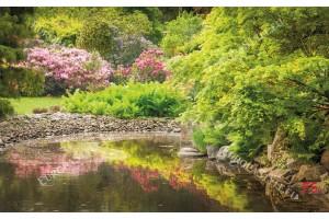 Фототапет красиво градинско езеро
