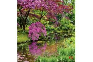 Фототапет пейзаж градина с езеро в красив парк