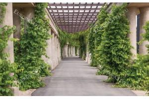 Фототапети градинска алея с много зеленина и колони