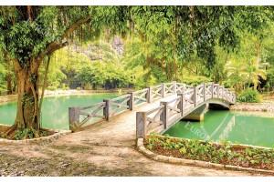 красив изглед тропически парк с езеро и мост