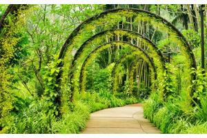 Фототапет градинска арка зелен оазис