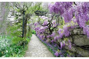 Фототапети градинска пътека с лилави цветя
