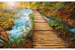 Фототапет дървена пътека край река