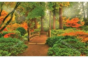 Фототапет дървен горски мост 2