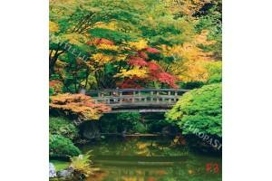 Фототапет дървено мостче над езеро