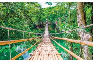 Фототапети красива гледка на висящ мост