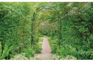 Фототапети градинска зелена арка 3