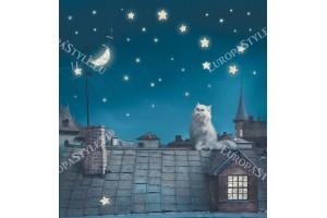 Фототапети котка на покрива
