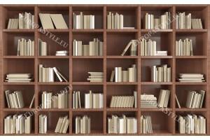 3д стена модерна библиотека книги в 2 цвята дърво
