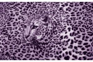 Фототапет леопардова текстура в лилав и черен нюанс