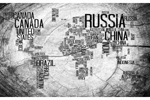 дизайн на карта на света основа дървена в 2 цвята