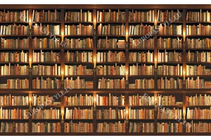 Фототапети библиотека със стари книги перфектна реалност