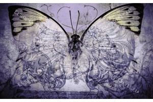 Фототапети арт пеперуда винтидж
