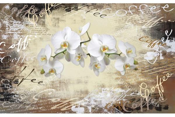 композиция ретро с надписи кафе и бели орхидеи