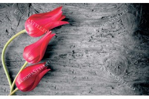 Фототапети червени лалета на сиво дърво