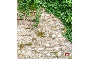 Фототапети каменна стена зид обвит в бръшлян