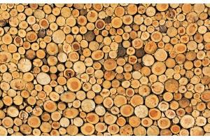 Фототапети имитация стена от дървени трупи