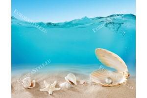 Фототапет морски раковини под вода