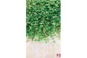 Фототапети стена със зелени листа